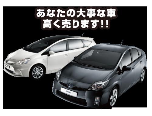 あなたの大事な車高く売ります!!
